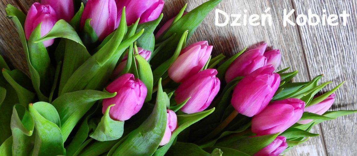 tulipany.white